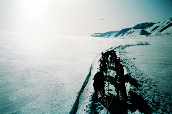 1995 Idritarod Expedition